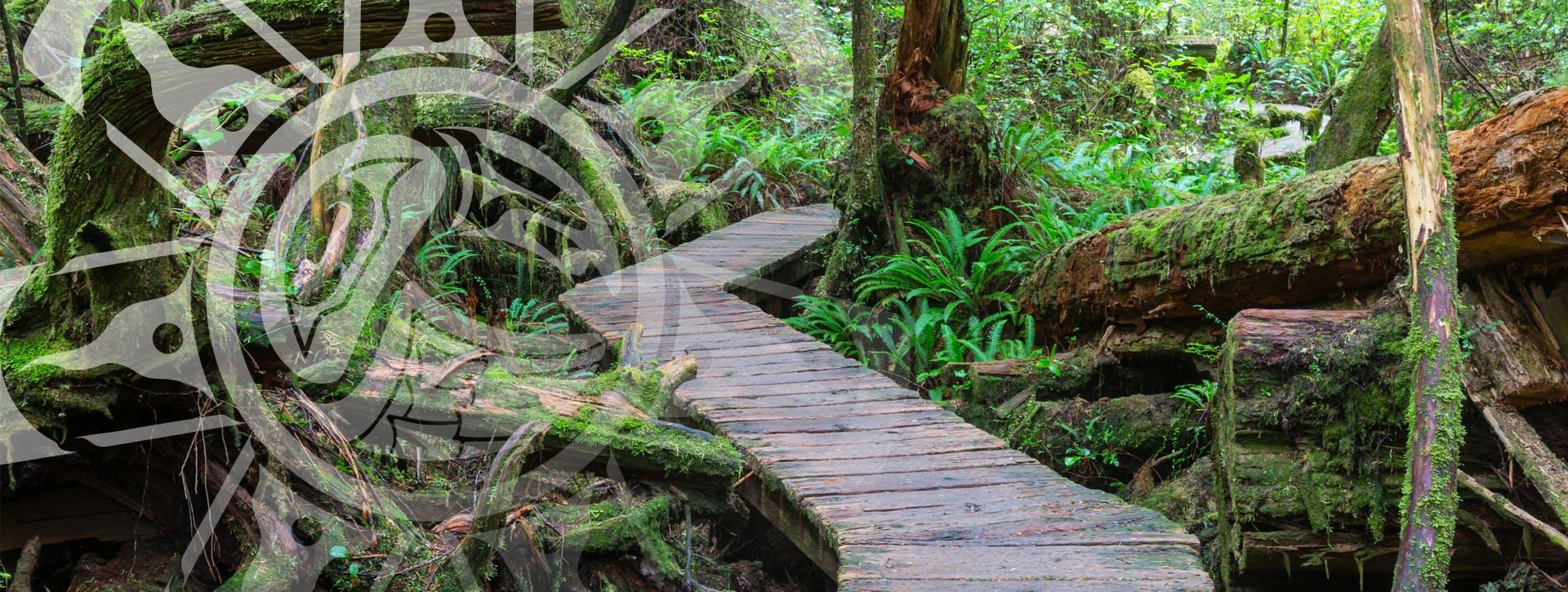 header-walkway